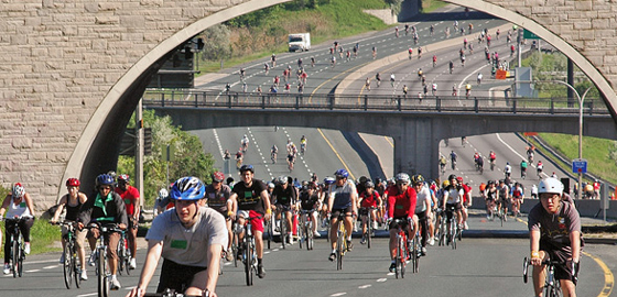 Cyclists on the freeway