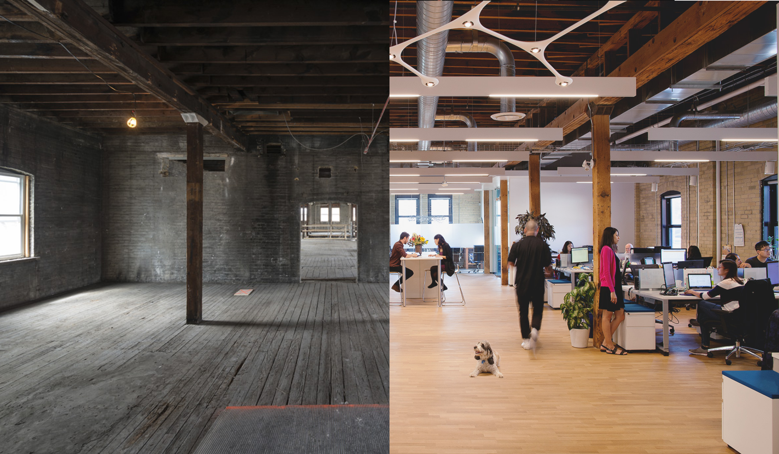 split screen image with stripped down empty brick and beam factory interior during restoration construction on the left and the same floor completed and in use as a modern day office