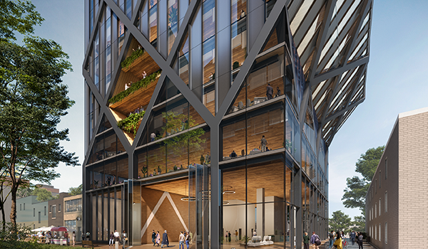 bottom portion of a modern office building with diamond shaped glazing pattern in between dark cladding and mass timber interior structure visible
