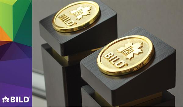 photo of two BILD Award trophies