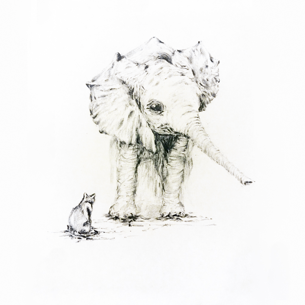 pencil sketch of an elephant and cat